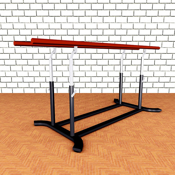 Parallel Bars in a Gymnasium