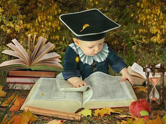Scholar Reading Book