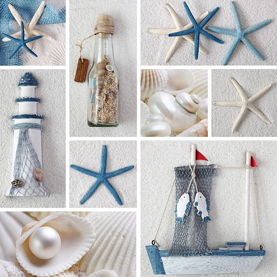 Collage of Seashells and Sea Stars