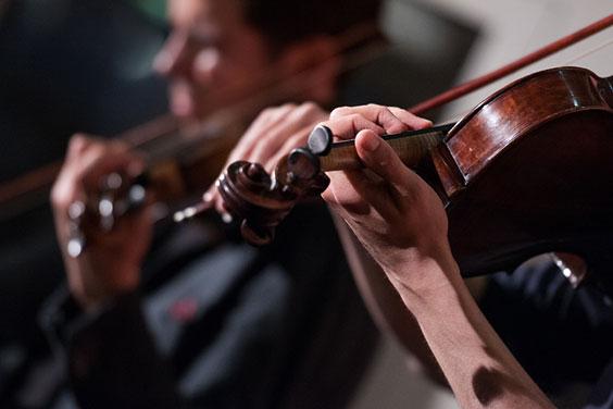 Violins at a Concert
