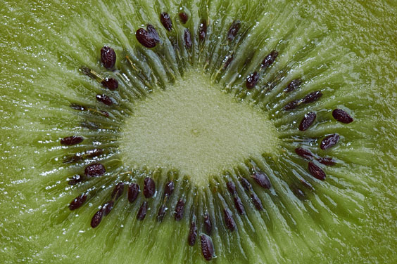 Kiwi Seeds in Context