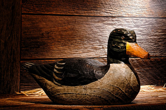 Carved Duck Decoy on Display