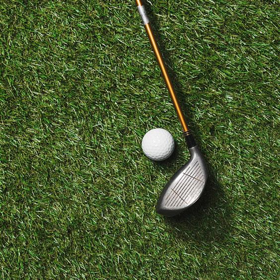 Golf Club and Golf Ball on Green Grass