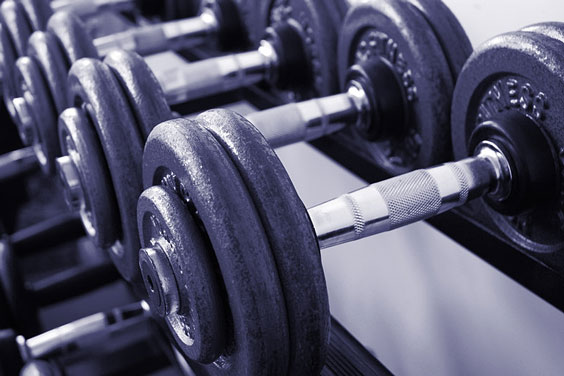 Fitness Weights in a Gym