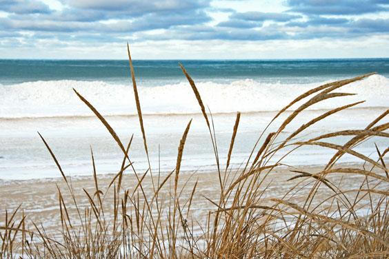 Lake Michigan Shoreline in Winter