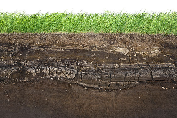 Layers of Underground Soil Below a Grassy Lawn