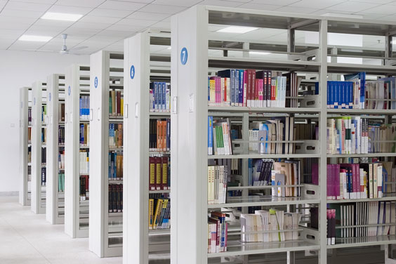 Contemporary Library Shelving