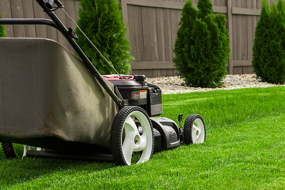 Power Lawn Mower Mowing a Lawn