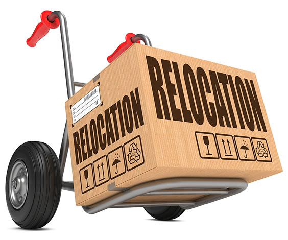 Relocation Box with Hand Truck