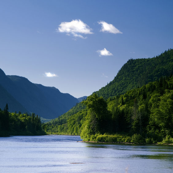 Tranquil River Valley
