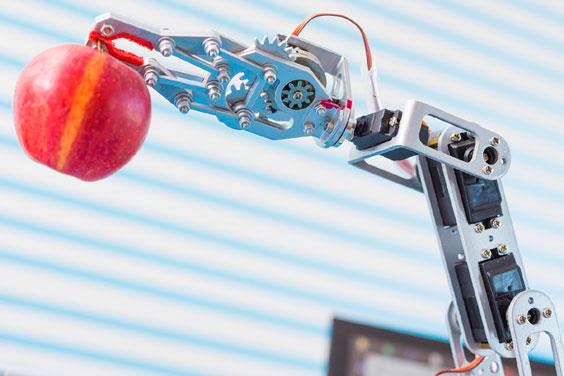 Robot Arm Holding an Apple