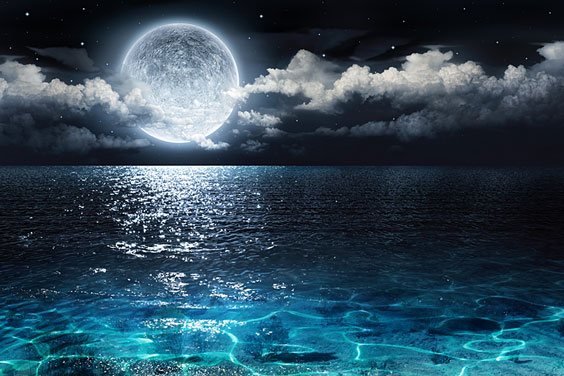 Romantic Moon Shining on the Ocean
