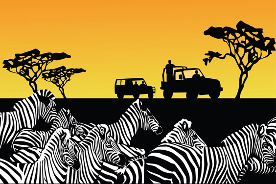 Safari Silhouette with Zebras