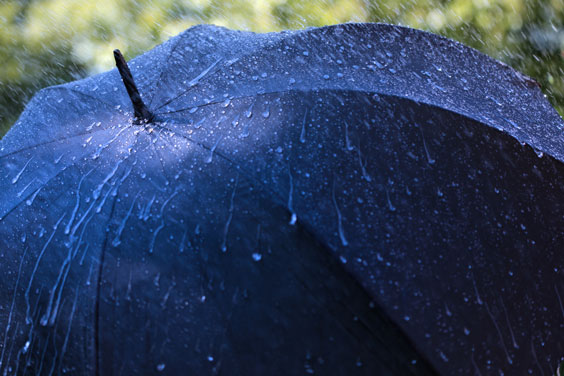 Rain Falling on a Blue Umbrella
