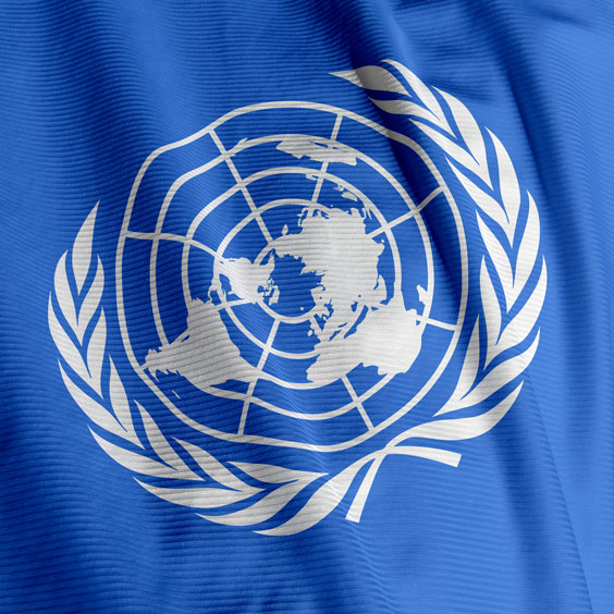 United Nations Flag Emblem